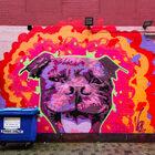 Про уличных художников иБелфаст