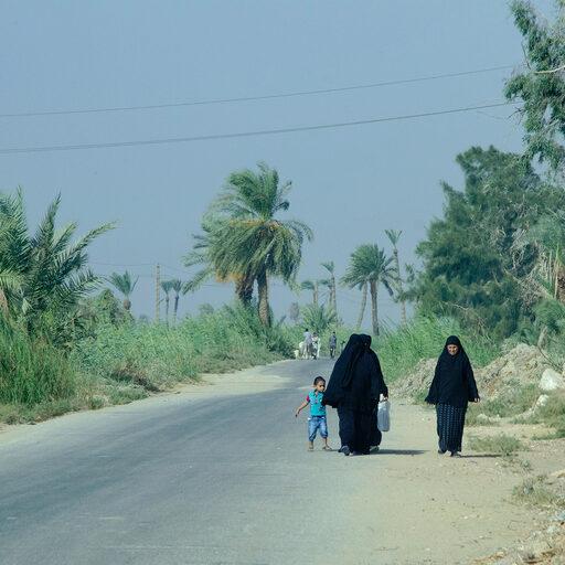 Египет нетуристический 2019