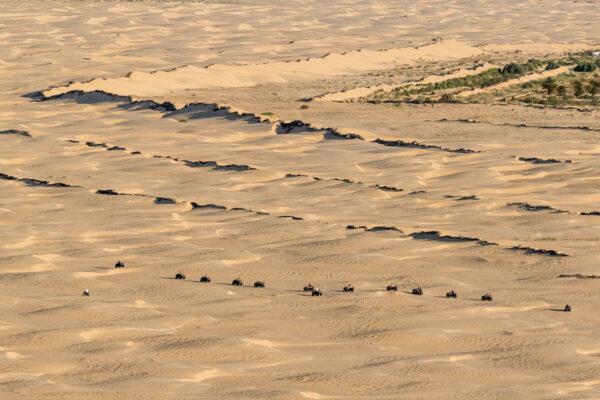 Тунис. Пустыня смотодельтаплана.