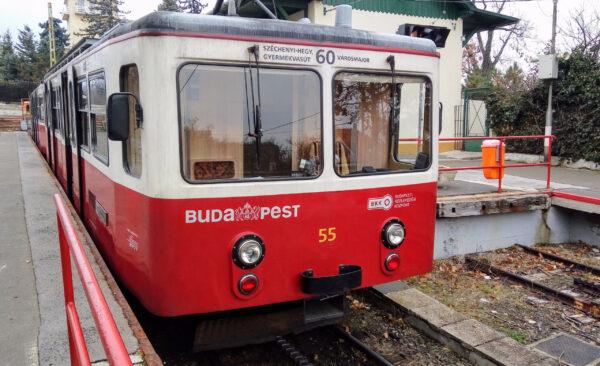 Зубчатый трамвай вБудапеште