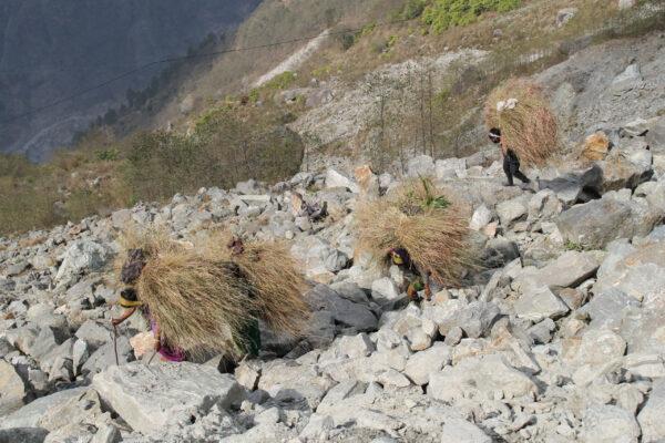 Непал. Часть 2. Долина Лангтанг.