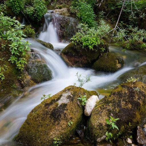 Каньон реки Мртвица, Черногория