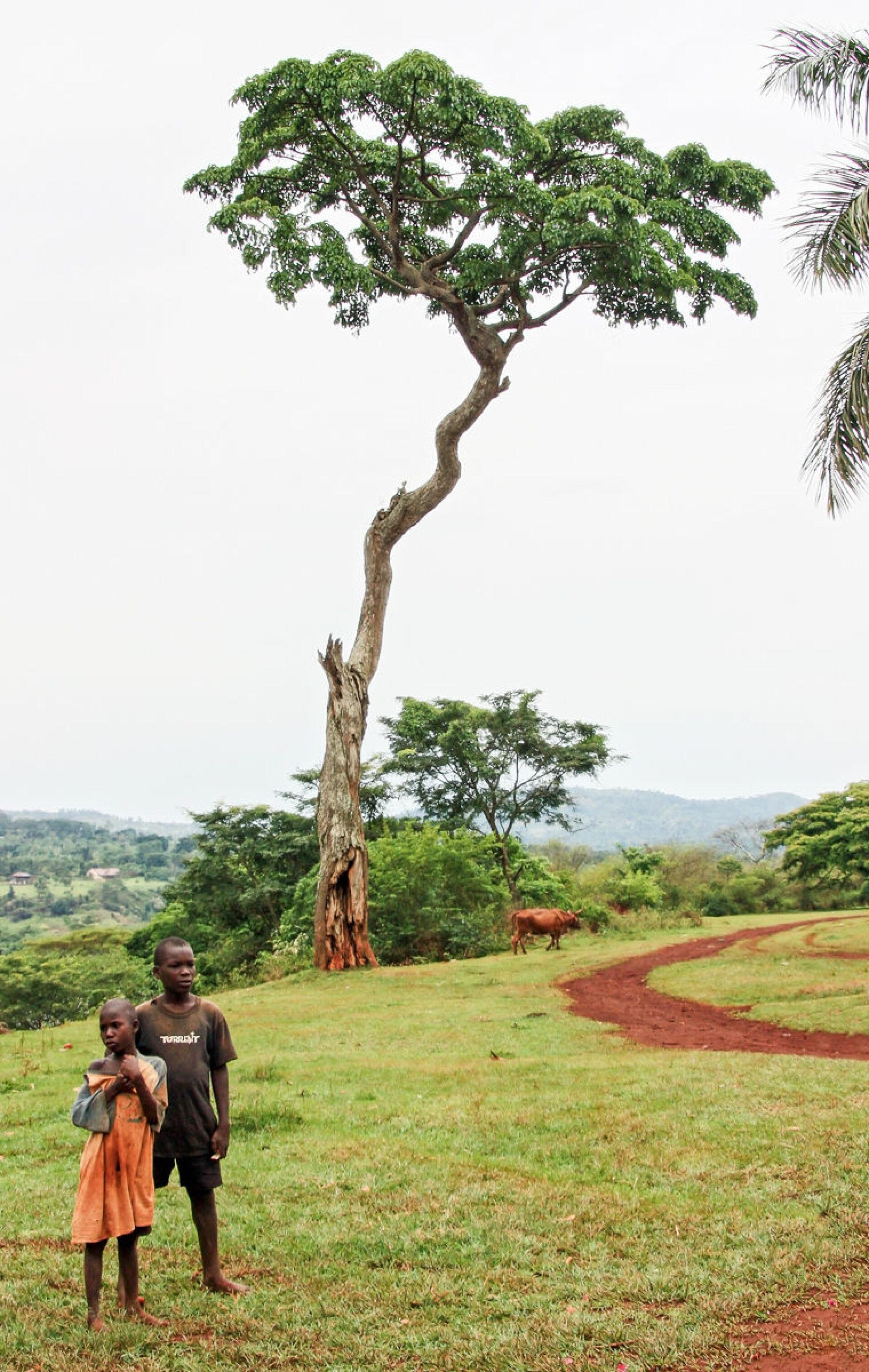 Экваториальная Африка