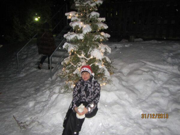 Новогодние каникулы 2014 вТаллинне.